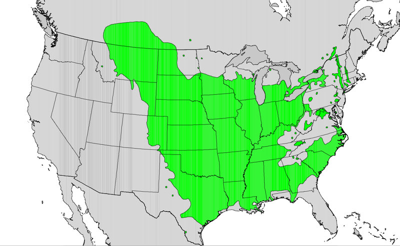 800px-Populus_deltoides_range_map.png