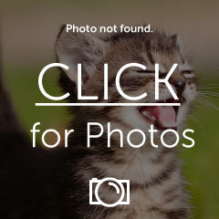 CameraHuntingFishingPics034.jpg