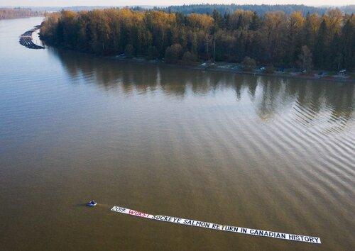 Bloodwater Tavish Campbell wild salmon British Columbia collapse