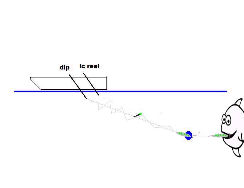 reeeel-dl.jpg