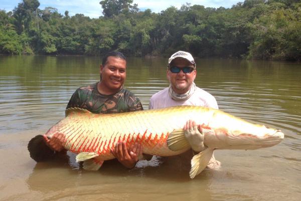 South american muskie musky tiger musky pike esox for Chautauqua lake fishing report