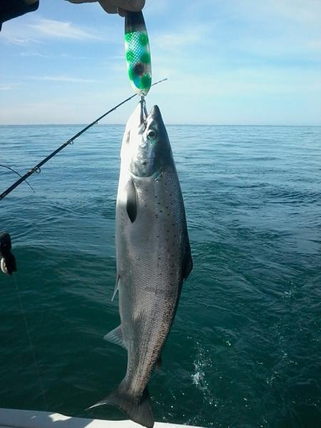 Atlantic new york fishing reports lake ontario south for South shore fishing report