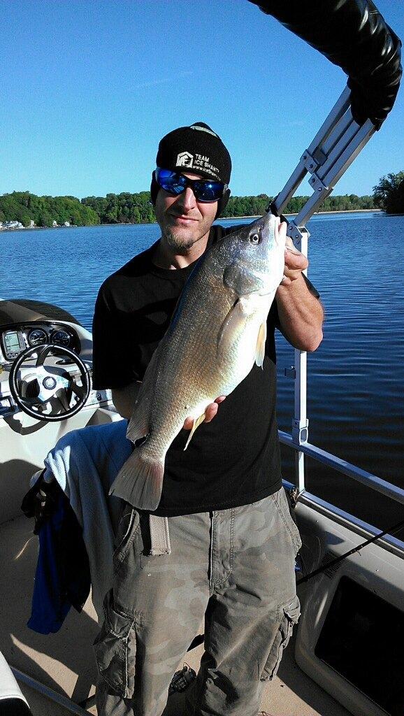Sheepshead new york fishing reports lake ontario for Sheepshead bay fishing report
