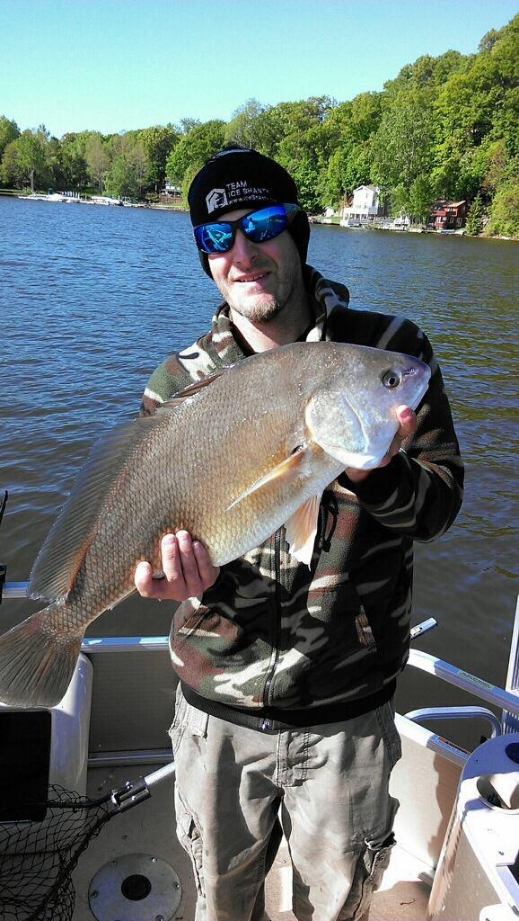 Sheepshead new york fishing reports lake ontario for Fishing report ny