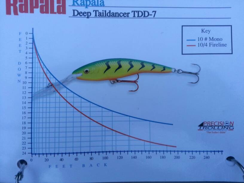 Rapala Taildancer Dive Curve Finger Lakes Discussion Lake Ontario United Lake Ontario S Largest Fishing Hunting Community New York And Ontario Canada