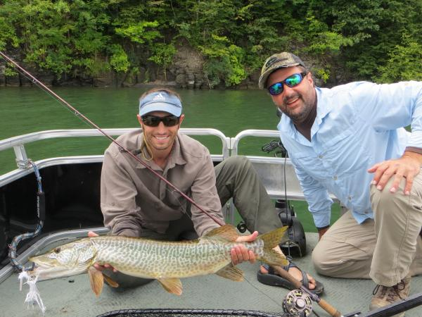 Otisco lake tiger on the fly musky tiger musky pike for Tiger muskie fishing
