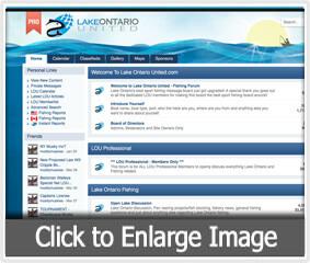 LOU_Pro_thumbnail.jpg