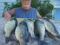 100-0283.JPG All caught on the St Lawrence River On wormsd