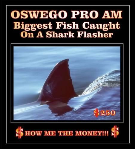 Shark $250.jpg