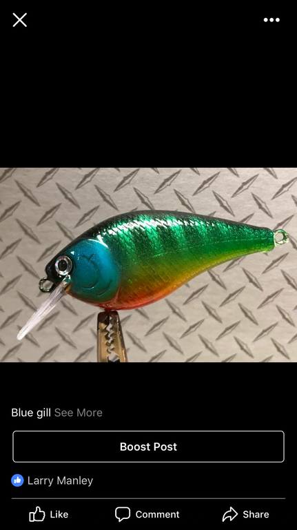 Spoon painting? - Tackle and Techniques - Lake Ontario