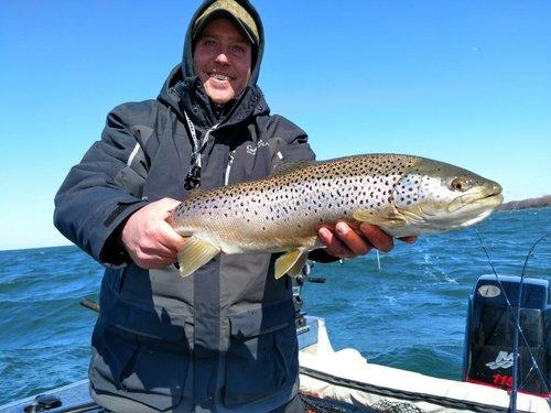 Brown run 3 25 olcott new york fishing reports lake for Olcott ny fishing report