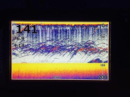IMG_2107.thumb.JPG.d0763467d611607e4b759fcd0ec21bd1.JPG