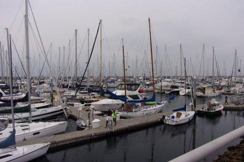 207837528_Seattlefishing201819a.thumb.JPG.133d63842f9072a4dfc9ac475a3670d0.JPG