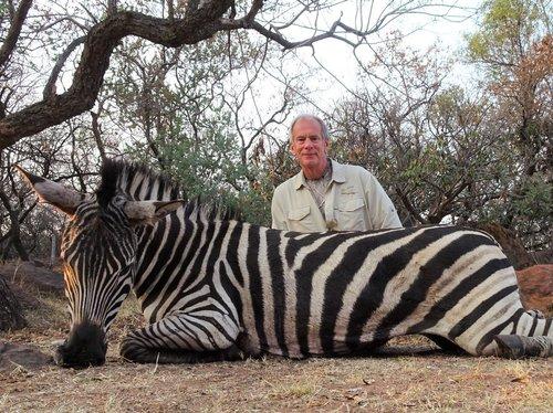 zebra and Dave (2).jpg