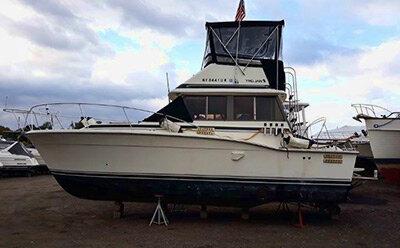 bulldog_boat3.jpg