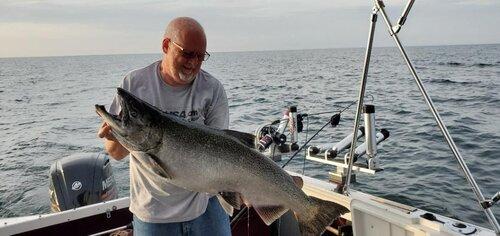 Big Salmon.jpg