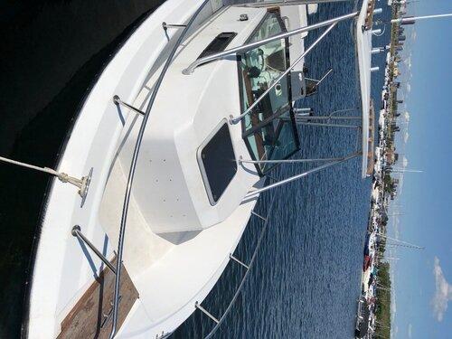 244816009_Boat5.thumb.jpg.8d729b85ecc96d4167c181d09bd80270.jpg