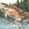 fishin boy